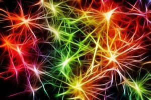 Neuronháló